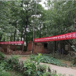 郑州大学联合河南三维建筑科技公司实施西平县传统民居加固